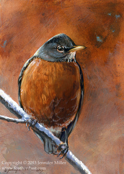 Early Spring Robin by Nambroth