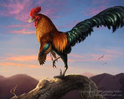 Velocirooster Mongoliensis