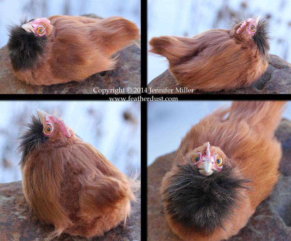Mini Derperella the chicken (1) by Nambroth