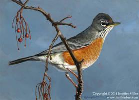 Alert Robin by Nambroth