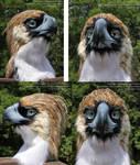 Philippine Eagle Mask