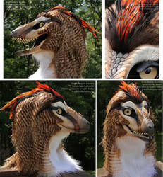 Kinglet, the 'raptor' Mask