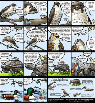 Duck Stamp Comic by Nambroth