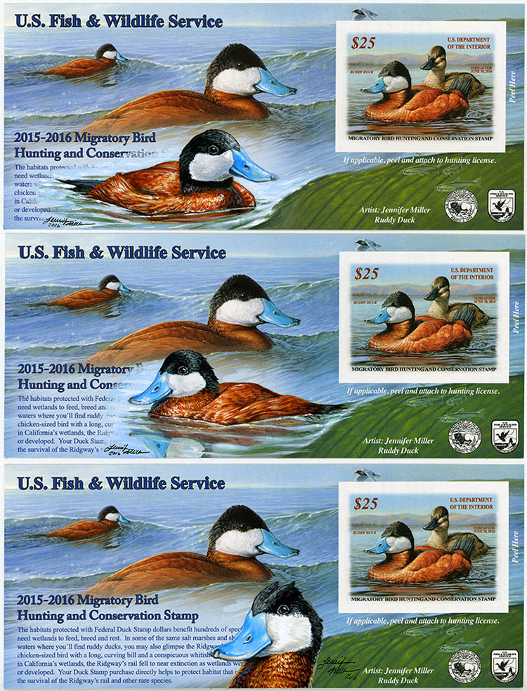 Federal Duck Stamp remarques by Nambroth