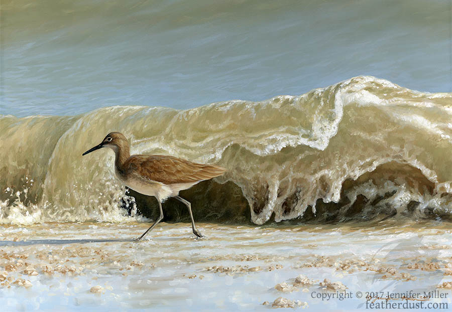 Willet - Here Comes Another! by Nambroth