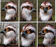 Ozawk Mask