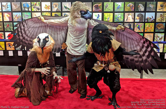 Bird Costumes at IOC 2018 by Nambroth