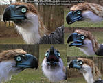 Philippine Eagle hand-feeding puppet by Nambroth