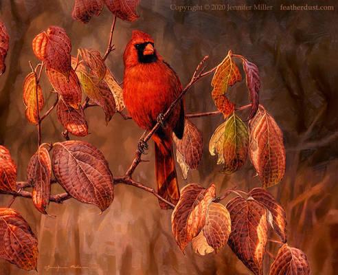 Northern Cardinal in Dogwood