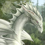 Sword of the Dragon: DETAIL