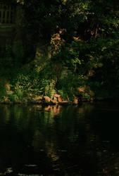 Nature by anacletus