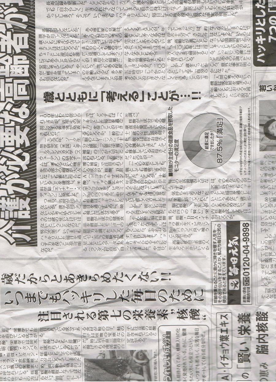Japanese Newspaper 6
