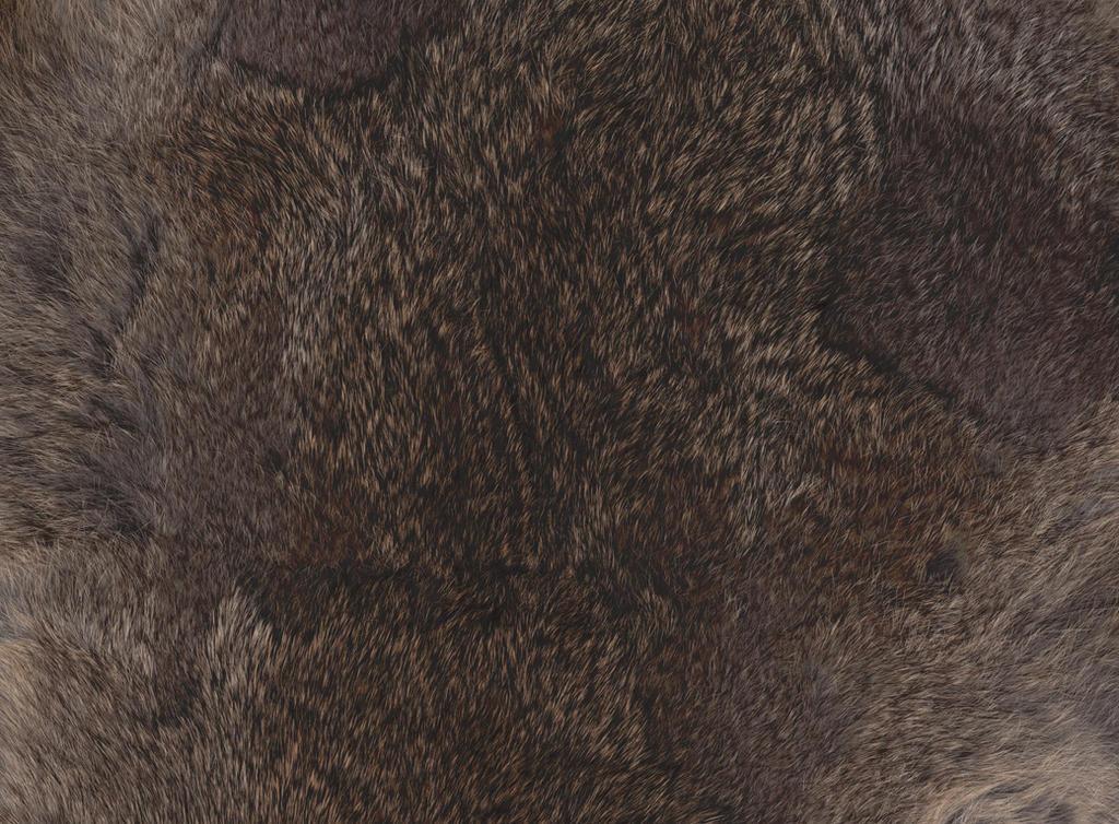 Rabbit Fur by Snowys-stock