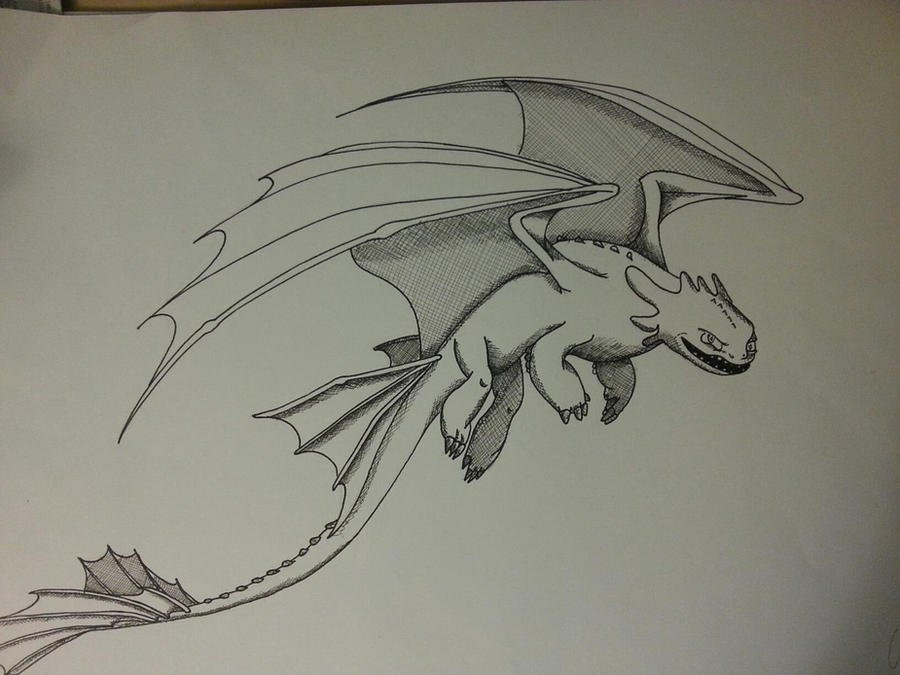 Night Fury Drawing Information Keywords And Pictures