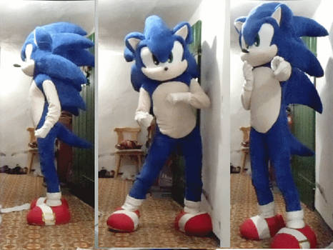 sonic the hedgehog cosplay by shadowhatesomochao