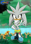 Silver the hedgehog in Sonic X by shadowhatesomochao