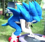 Sonic the hedgehog cosplay / FOR SALE 600 Euro by shadowhatesomochao