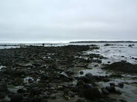 rocky beach by kirastocks