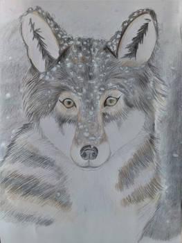 (Gift) Wolf