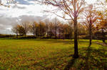The Warm Glow Of Autumn