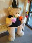 Wizard Bear At Bubble Shop