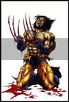 rey's wolverine