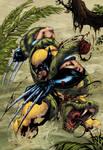 Wolverine jungle