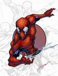 SpiderMan 2 Circle Series