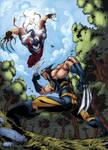 Wolverine VS Ripclaw