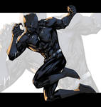 Fighting Black Panther Color
