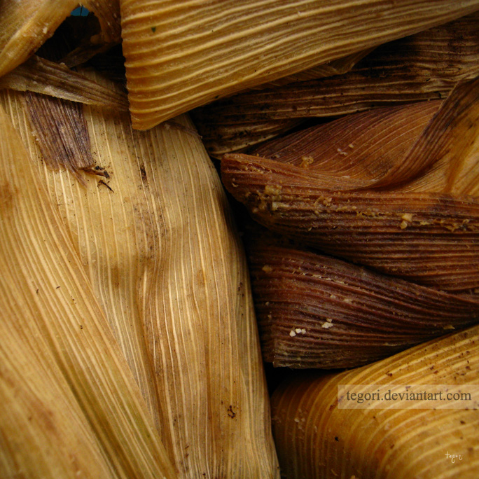 tamales by Tegori