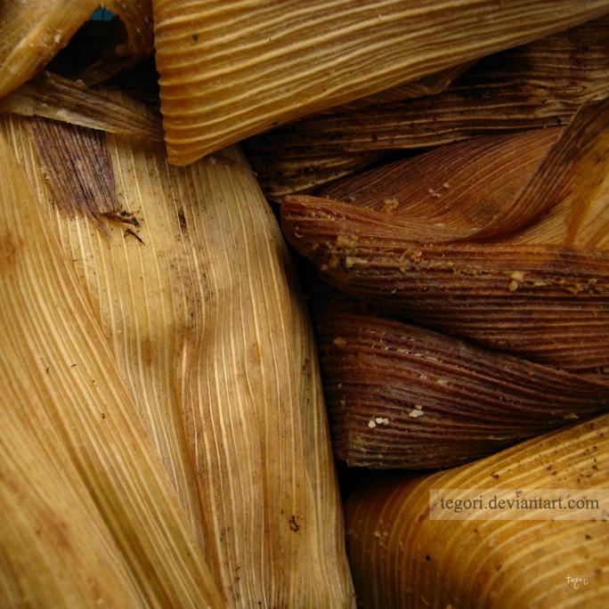 tamales by Tegori