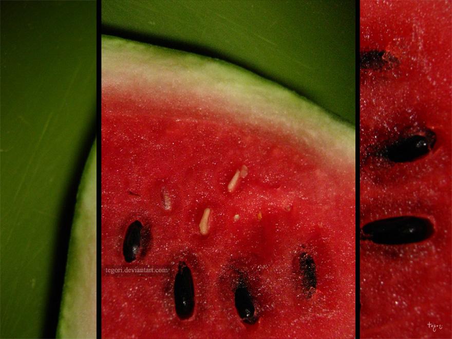 watermelon by Tegori