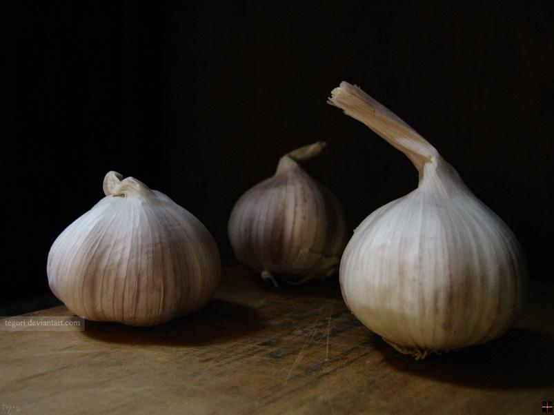 garlics by Tegori