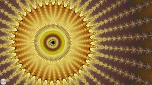 JLF1365 Honey Sun