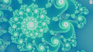 JLF1993 Turquoise Shell