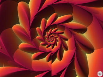 JLF2959 Quore di fiore rosso