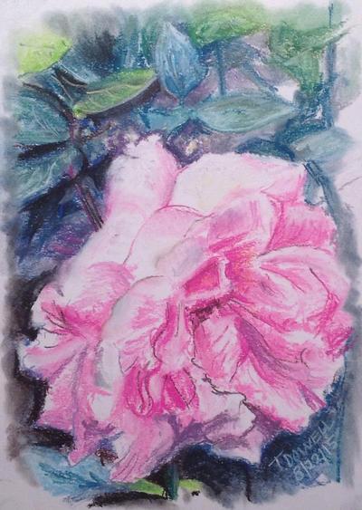 Grandma's flowers by Tomocus81