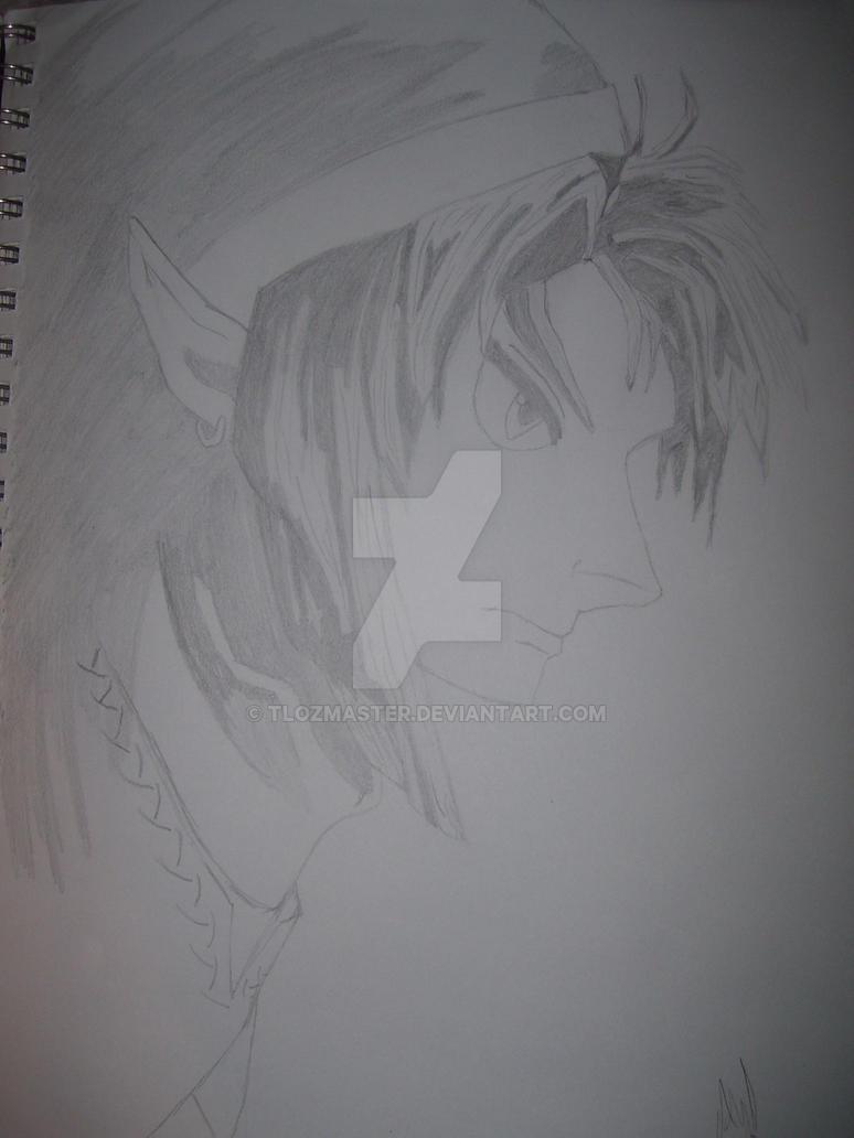 Link, Hyrules savior by TLOZMaster