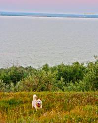 Brates Lake and Sasha by MaryJeanQ