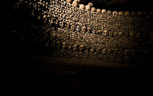 Wall of the Dead - Wallpaper by goranbaotic
