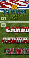NFL Football Photoshop Styles - NFC West