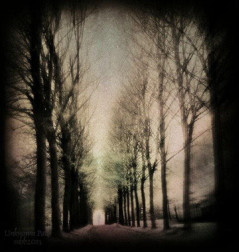 Unknown Path by MagicBlanche