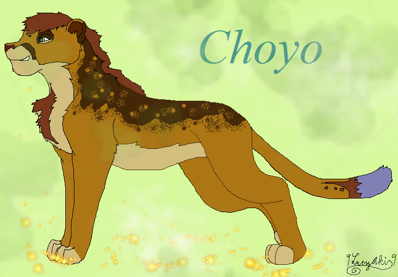 Choyo Lion King