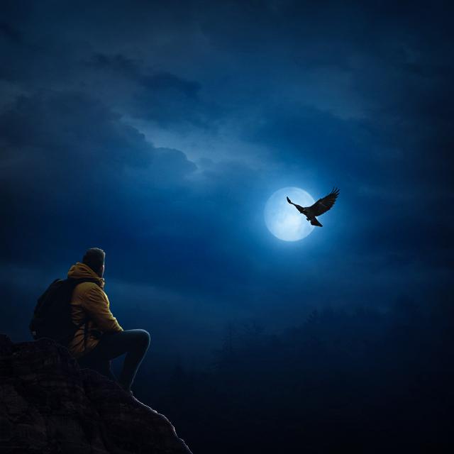 Photo Manipulation (Dark Night)