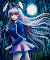 Moon and Rabbits by tafuto001