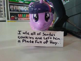 twilight gets pony pony shamed for christmas