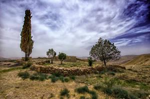 Along The Desert Highway