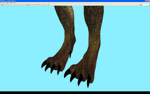 Rather wolfy feet meshes