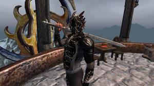 Drakia City Guard Armor 4